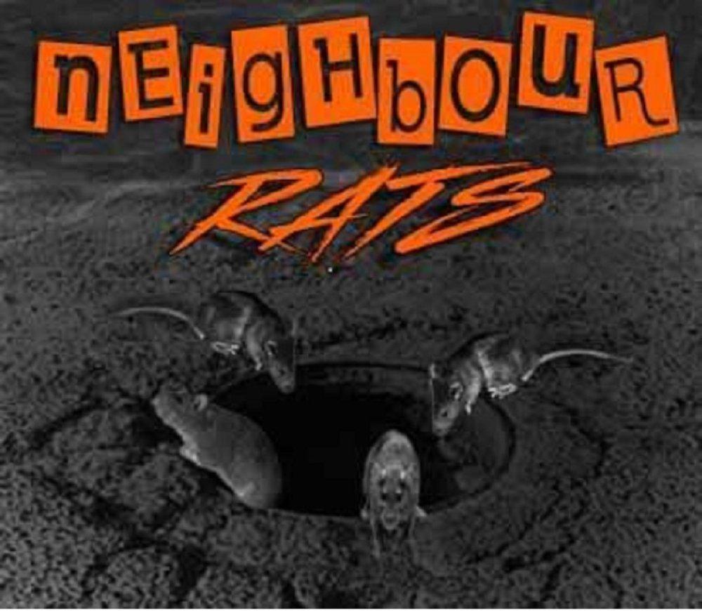 Neighbour Rats: Demo 2019